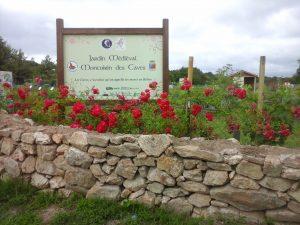 jardin-medieval-des-cavec-juin-2016-20160627_183135